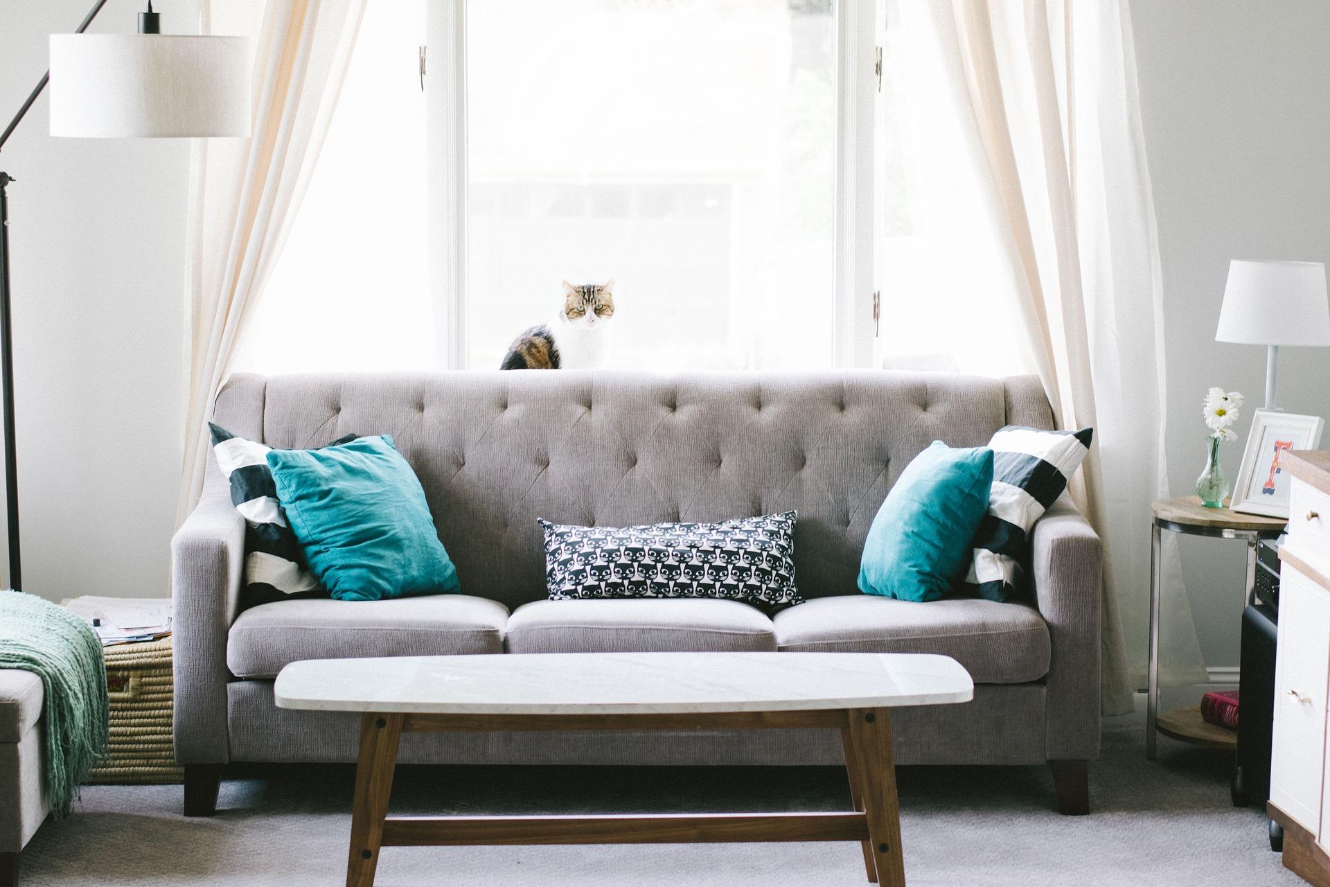 Cáp. 4 #StylishDeco: Cómo elegir cortinas para cada ambiente