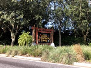 animal kingdom lodge  1